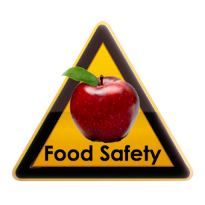 Food Safety Icon 300x300